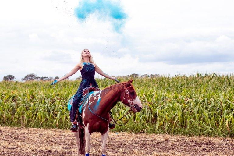 Blaues Holi Pulver mit Pferd